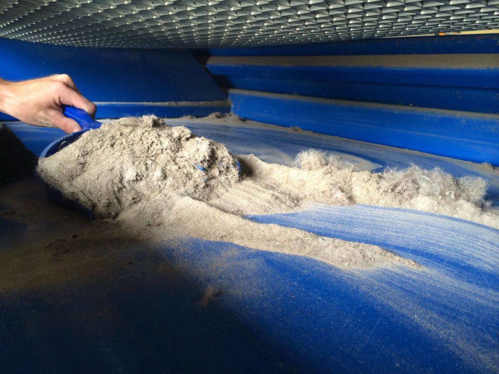 carpet dirt